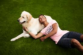 Artificial Grass for Dogs – Everything You Need to Know